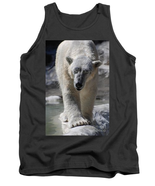 Polar Bear Balance Tank Top by DejaVu Designs
