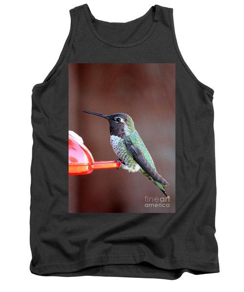 Portrait Of A Hummingbird Tank Top