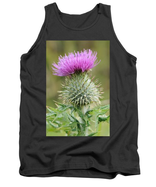 Purple Thistle Tank Top