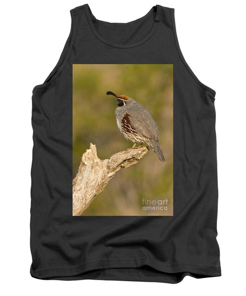 Tank Top featuring the photograph Quail On A Stick by Bryan Keil