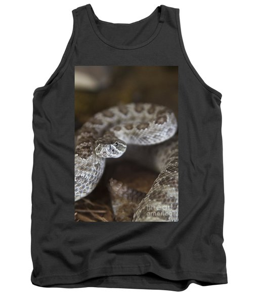 A Rattlesnake Thats Ready To Strike Tank Top