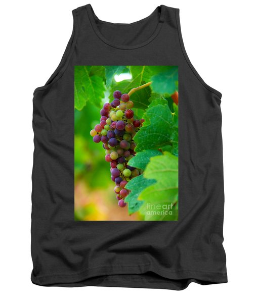 Red Grapes Tank Top