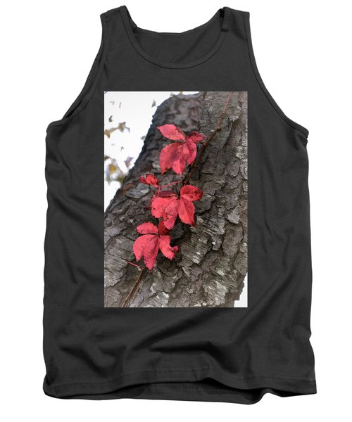 Red Leaves On Bark Tank Top
