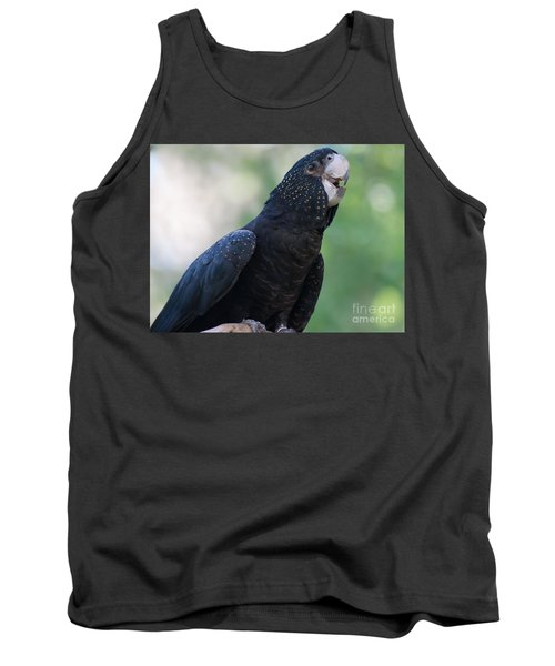 Red-tailed Black Cockatoo Tank Top by Bianca Nadeau