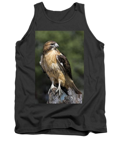 Red Tailed Hawk Tank Top