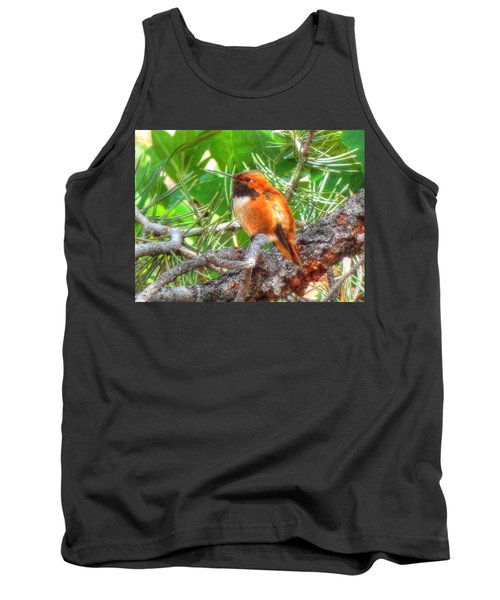 Redheaded Hummingbird II Tank Top by Lanita Williams