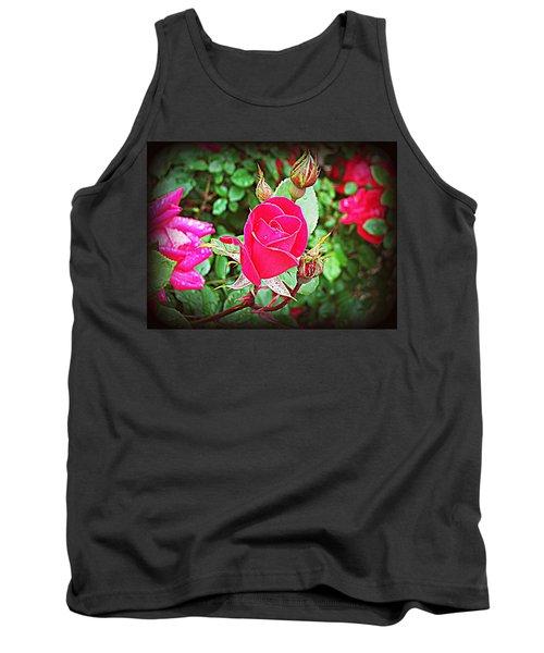 Rose Garden Centerpiece 2 Tank Top by Pamela Hyde Wilson