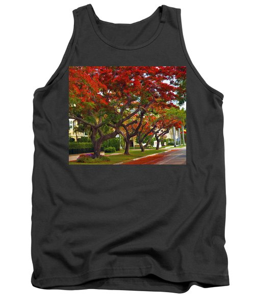 Royal Poinciana Trees Blooming In South Florida Tank Top