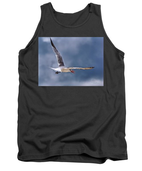 Royal Tern 1 Tank Top