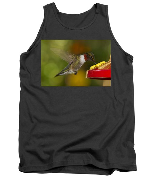 Ruby-throat Hummer Sipping Tank Top