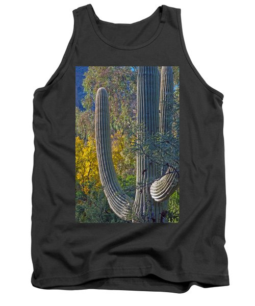 Saguaro Fall Color Tank Top