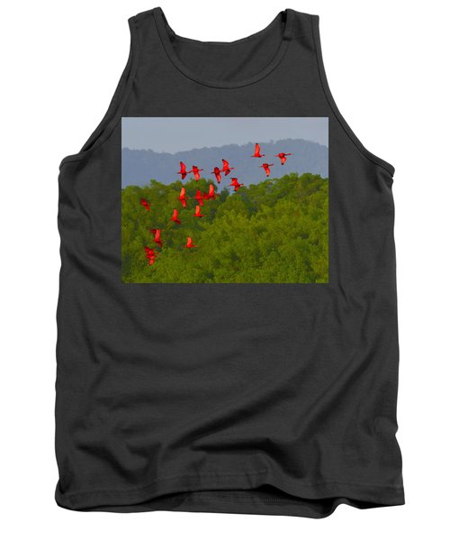 Scarlet Ibis Tank Top by Tony Beck