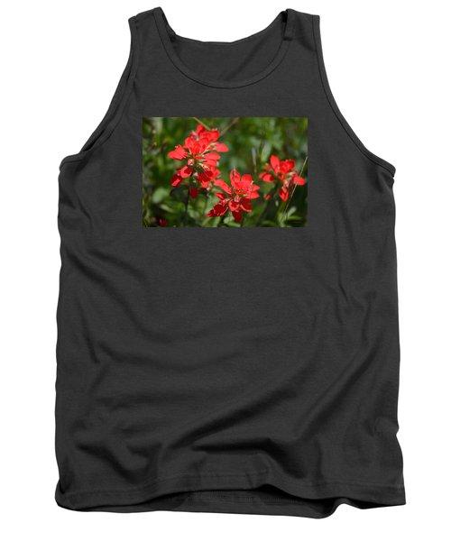 Scarlet Paintbrush. Texas Wildflowers. Castilleja_indivisa Tank Top by Connie Fox