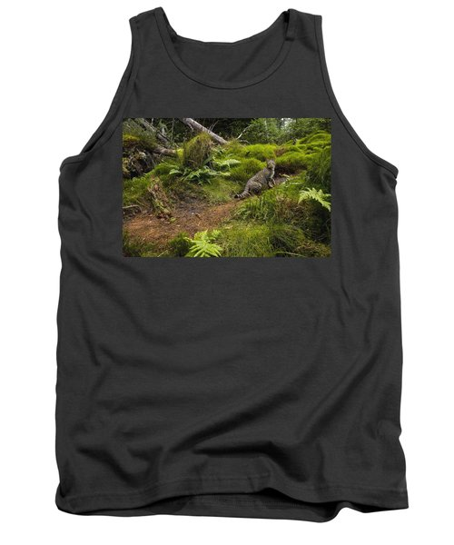 Scottish Wildcat And Domestic Cat Tank Top