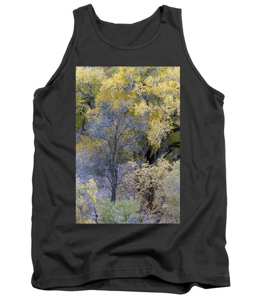 Sedona Fall Color Tank Top