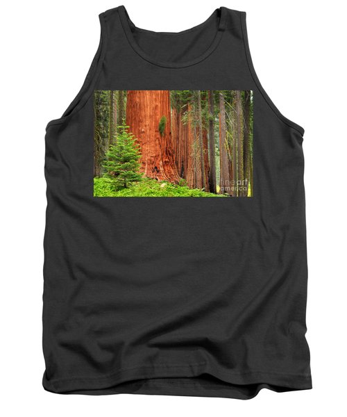 Sequoias Tank Top