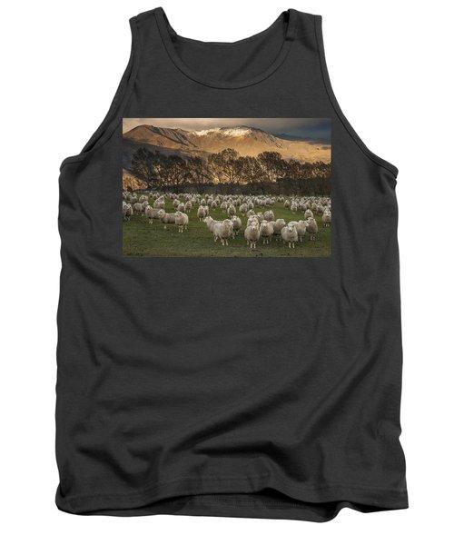 Sheep Flock At Dawn Arrowtown Otago New Tank Top