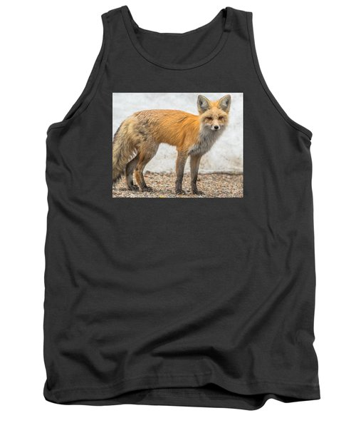 Tank Top featuring the photograph Smart Like A Fox by Yeates Photography