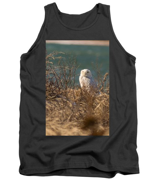 Snowy Owl At The Beach Tank Top