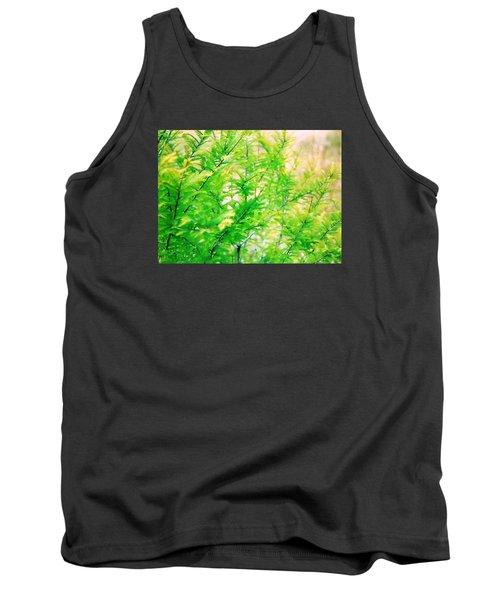 Spring Cypress Beauty Tank Top by Belinda Lee