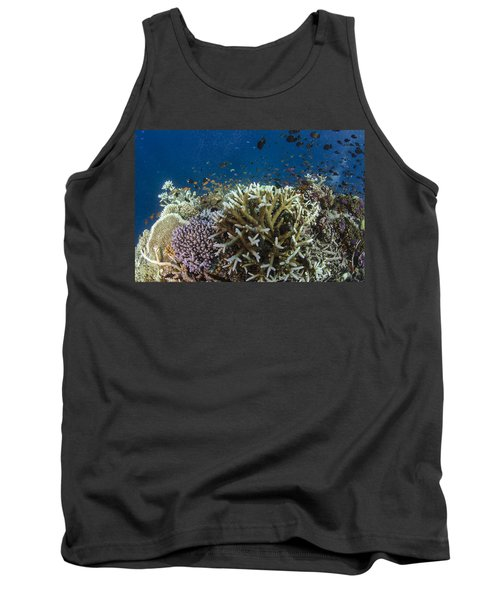 Staghorn Coral And Fish Koro Island Fiji Tank Top