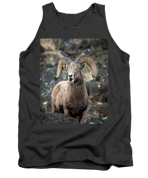 Tank Top featuring the photograph Startled Ram by Steve McKinzie