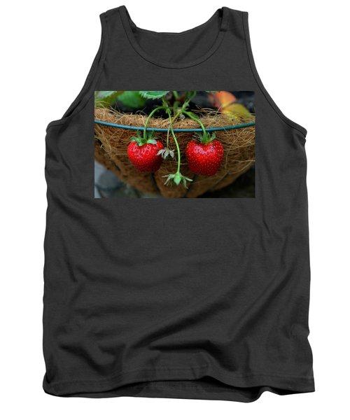 Strawberries Tank Top by Pamela Walton