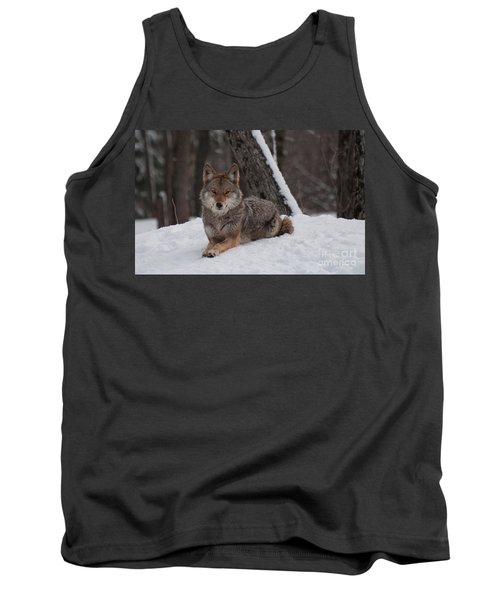 Striking The Pose Tank Top by Bianca Nadeau