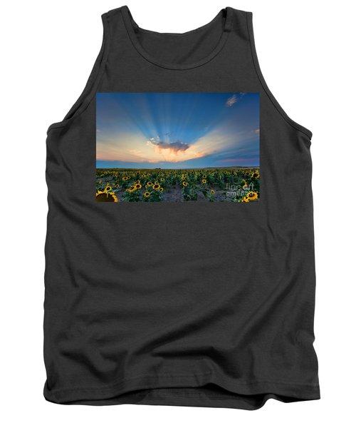 Sunflower Field At Sunset Tank Top