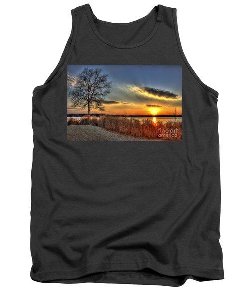 Sunset Sawgrass On Lake Oconee Tank Top by Reid Callaway