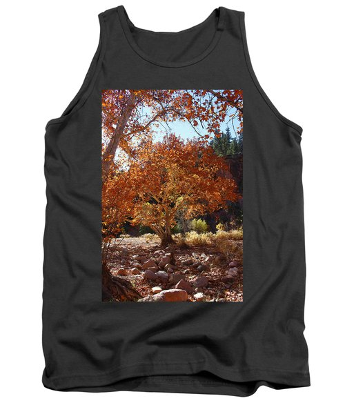 Sycamore Trees Fall Colors Tank Top by Tom Janca