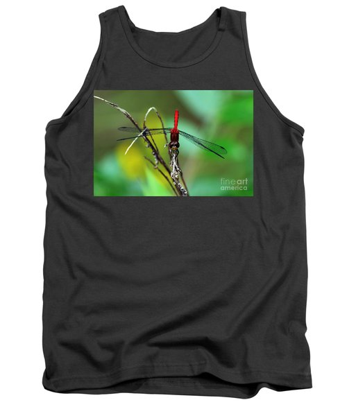Taking A Bow Tank Top by Kevin Fortier