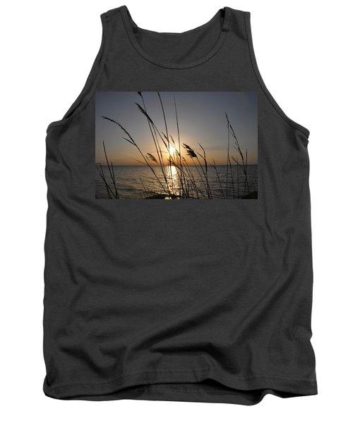 Tall Grass Sunset Tank Top
