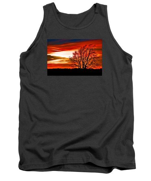 Texas Sunset Tank Top by Darryl Dalton