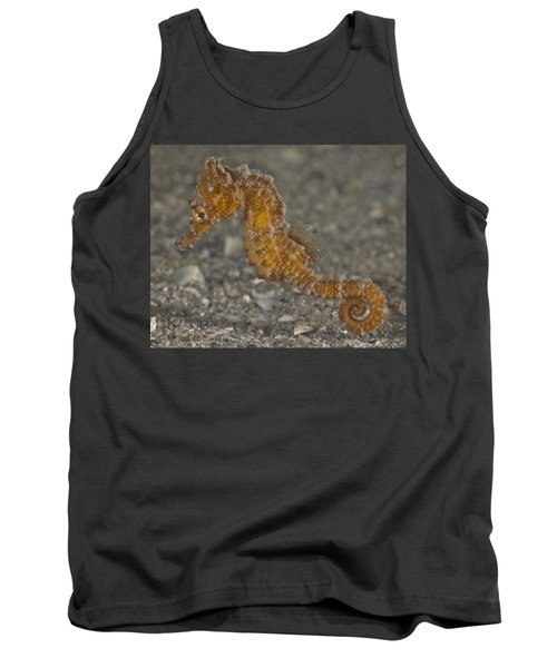 The Baby Seahorse Tank Top
