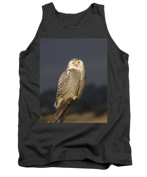 The Eyes Are It Tank Top by Doug Lloyd