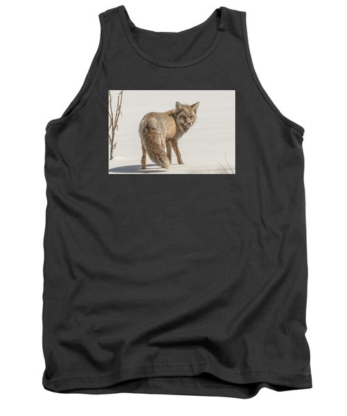 Tank Top featuring the photograph The Hungry Fox by Yeates Photography