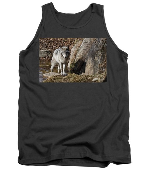 Tank Top featuring the photograph Timber Wolf In Pond by Wolves Only