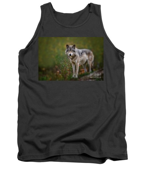 Timber Wolf Pictures 401 Tank Top