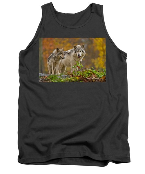 Timber Wolf Pictures 411 Tank Top
