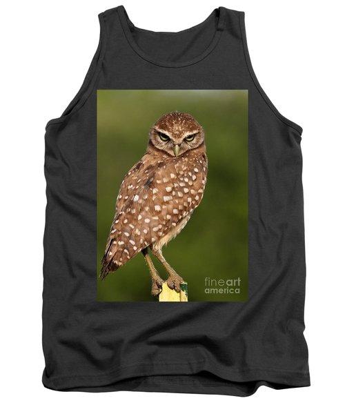 Tiny Burrowing Owl Tank Top