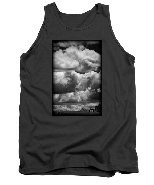 Top Of The World Tank Top by Joan Davis