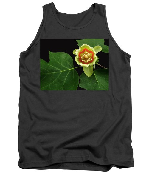 Tulip Bloom Tank Top by Don Spenner