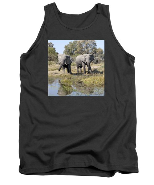 Tank Top featuring the photograph Two Male Elephants Okavango Delta by Liz Leyden
