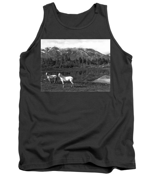 Two White Horses By A Pond Tank Top