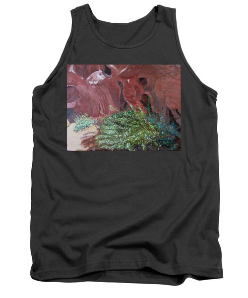 Valley Of Fire State Park Tank Top
