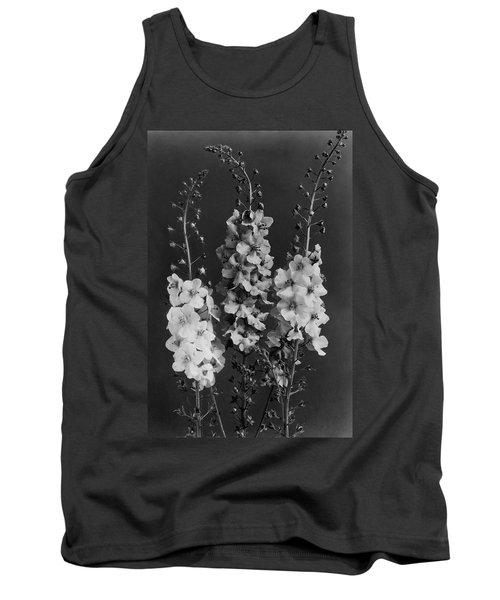 Verbascum Phoeniceum Flowers Tank Top