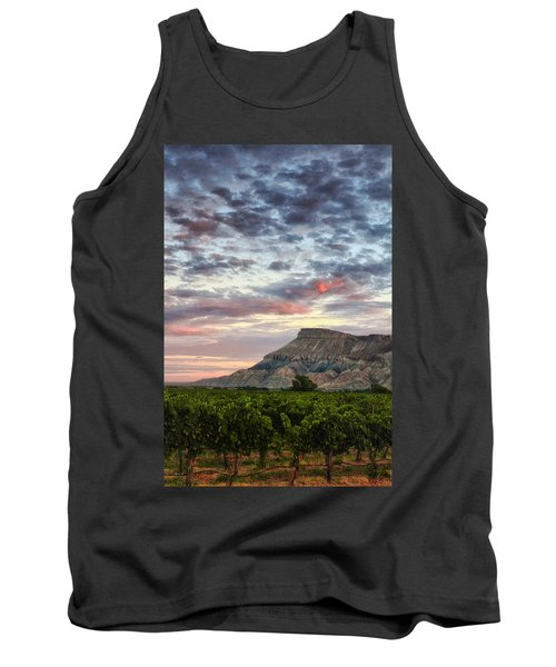 Vineyards And Mt Garfield Tank Top
