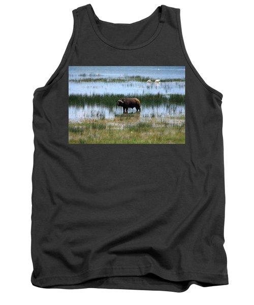 Water Buffalo At Lake Nakuru Tank Top