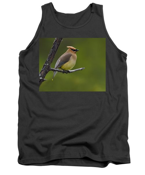 Wax On Tank Top by Tony Beck